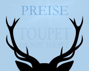 toupet_th-preise